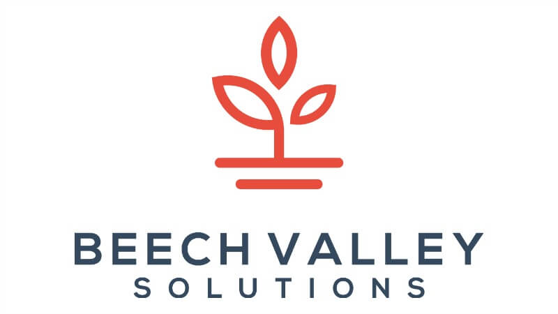 beech valley tax associates technical accounting auditors transaction services